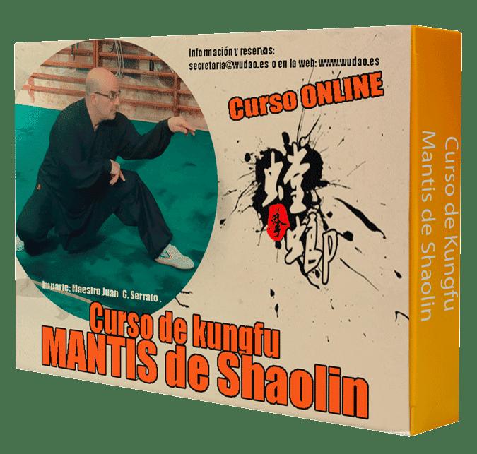 Curso Intensivo Kungfu la Mantis de Shaolin (少林 螳螂拳)