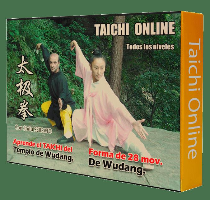 Curso de TAICHI WUDANG de 28 mov.  武当 太极拳 二十八式