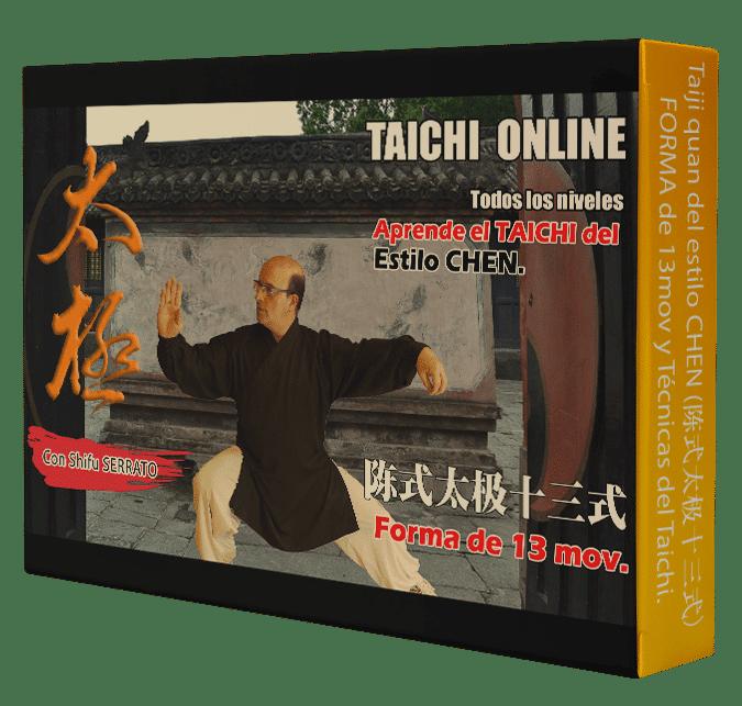 Curso de TAICHI CHEN de 13 mov.  陈式 太极十三式